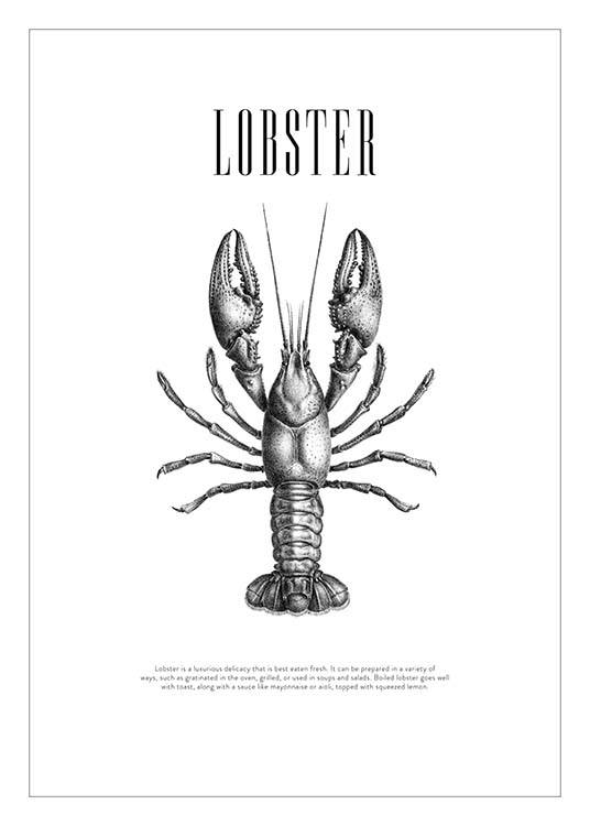 Lobster No2 Poster / Black & white at Desenio AB (3162)
