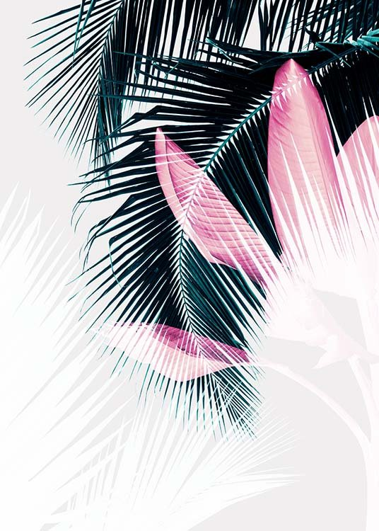 Palm Leaves Exposure Poster / Botanical at Desenio AB (3592)