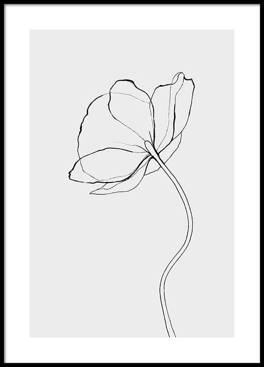 Line Drawing Poster : Line poppy poster