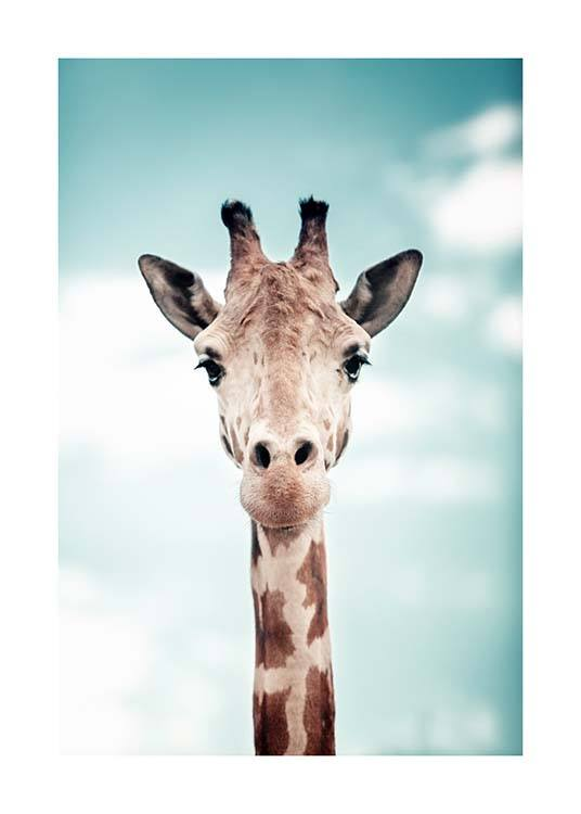 Peek A Boo Giraffe Poster / Photographs at Desenio AB (3856)