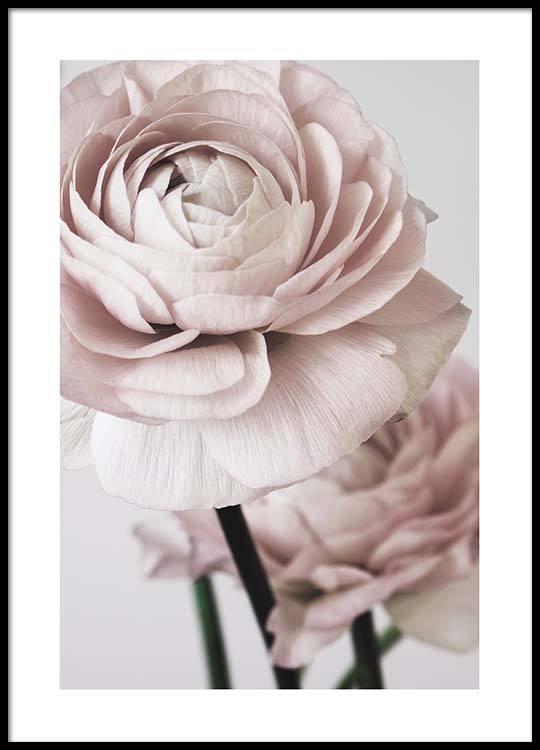 pink flower dream no2 poster. Black Bedroom Furniture Sets. Home Design Ideas