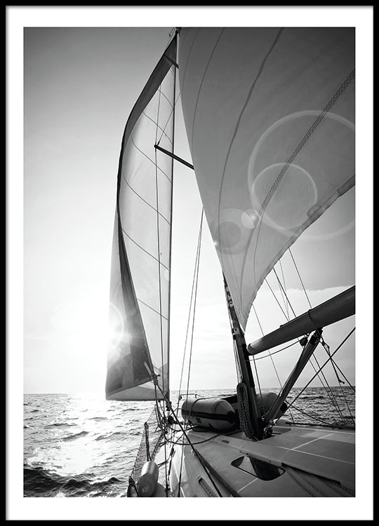 Posters and prints with black and white photographs sail boats