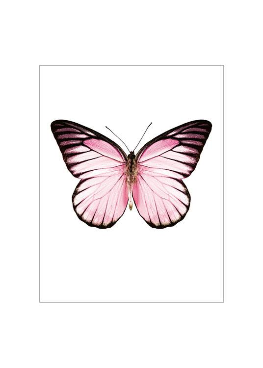 Pink Butterfly Small Poster  / Animals at Desenio AB (7431)