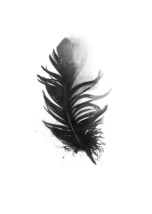 Black Feather Aquarell, Poster / Black & white at Desenio AB (7801)