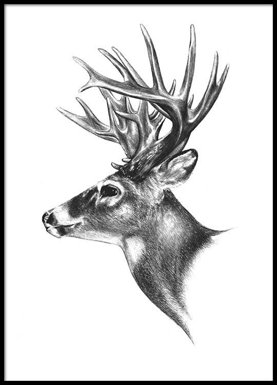 Black and white print with a reindeer trendy prints for interior design