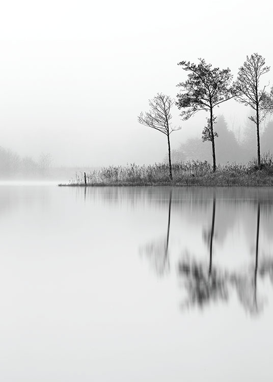 Lake, Poster / Black & white at Desenio AB (8116)