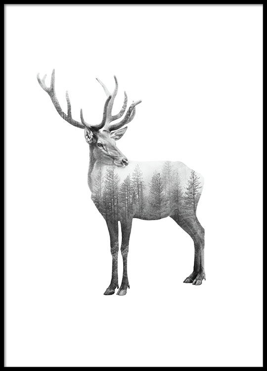 Prints with black and white photographs of animals nordic decor