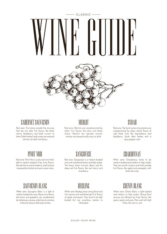 Wine Guide, Poster / Kitchen at Desenio AB (8228)