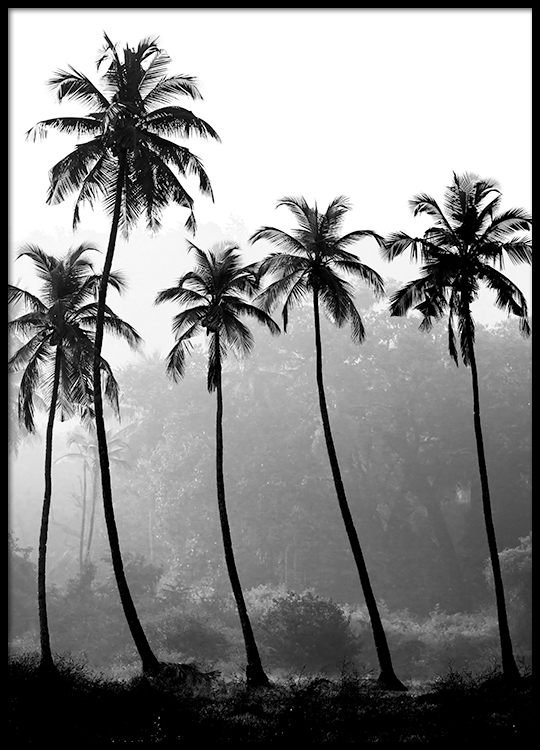 Palm trees poster in the group prints nature at desenio ab 8379