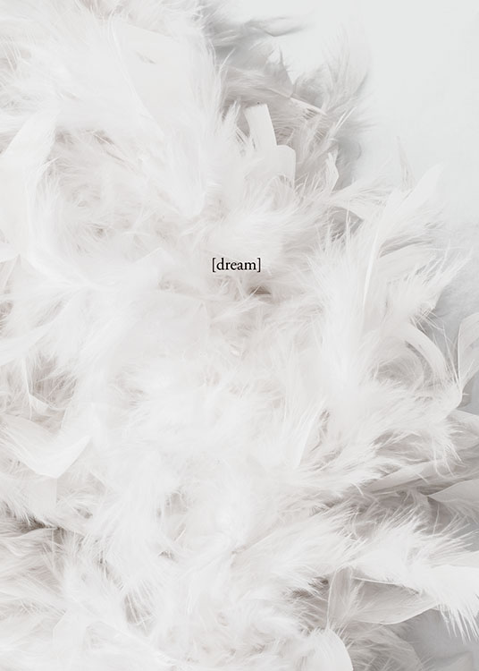 – Photograph of a bunch of white feathers with the word