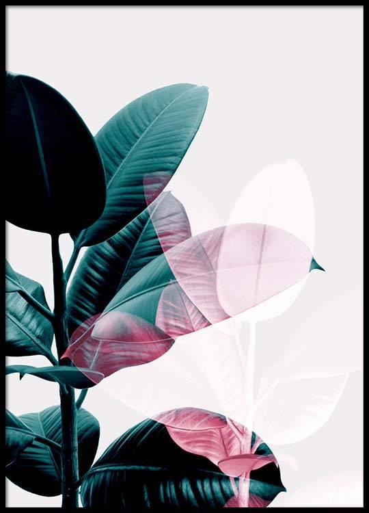 Botanical double exposure photo art of a ficus