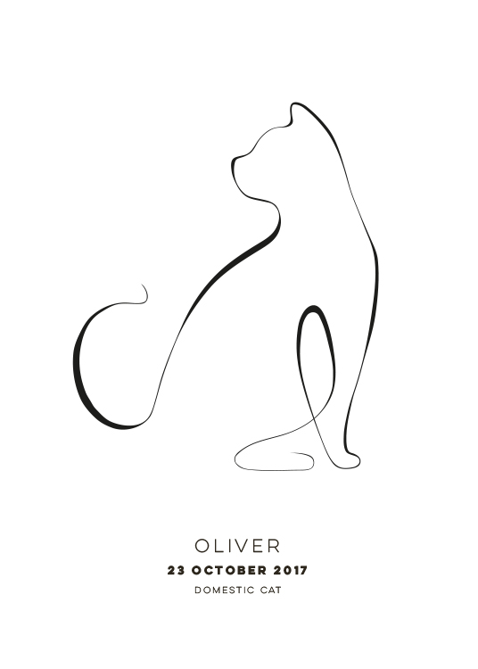 - Illustration of a cat with a white background and text underneath