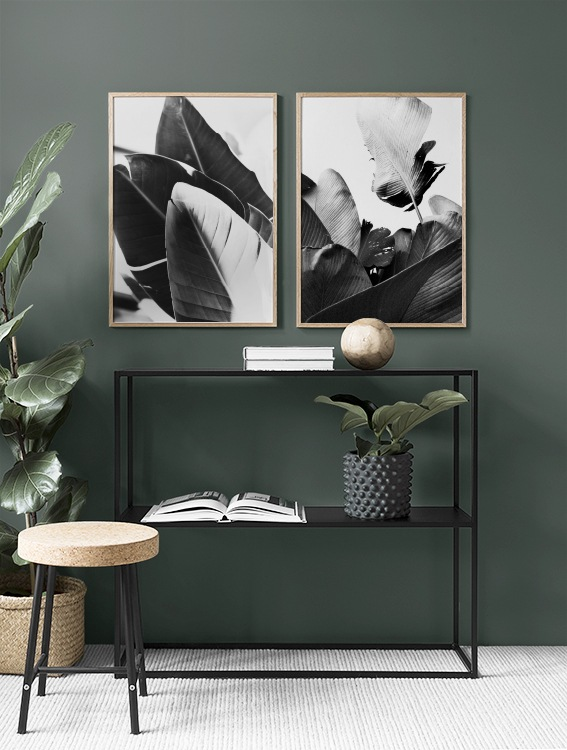 Botanical prints with black-and-white banana leaves