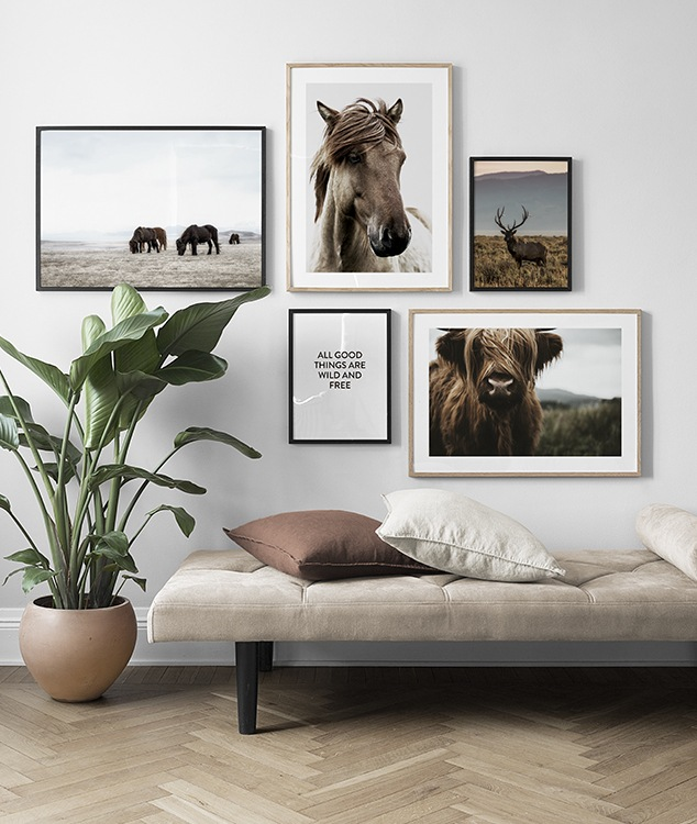 Inspiration living room with animal posters and muted colours